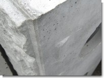 L型の爪.jpg