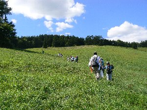 2-6)萩の山登り.jpg