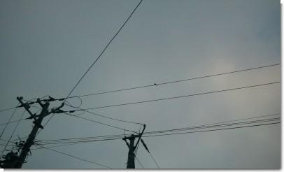 2011-07-18 18.40.10.jpg
