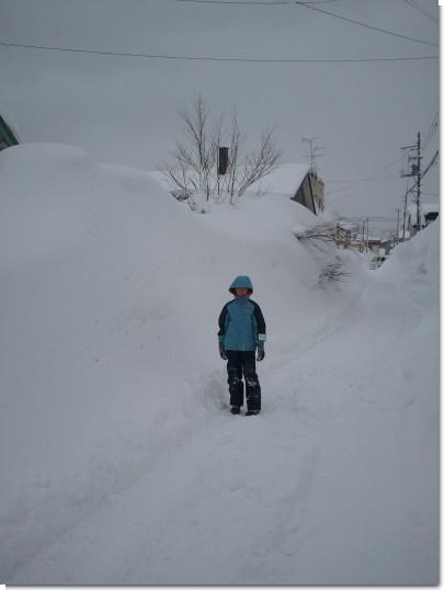 2012-02-12 12.43.33.jpg
