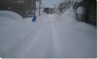 豪雪0116.jpg