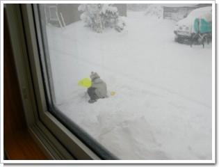 雪遊び1228.JPG